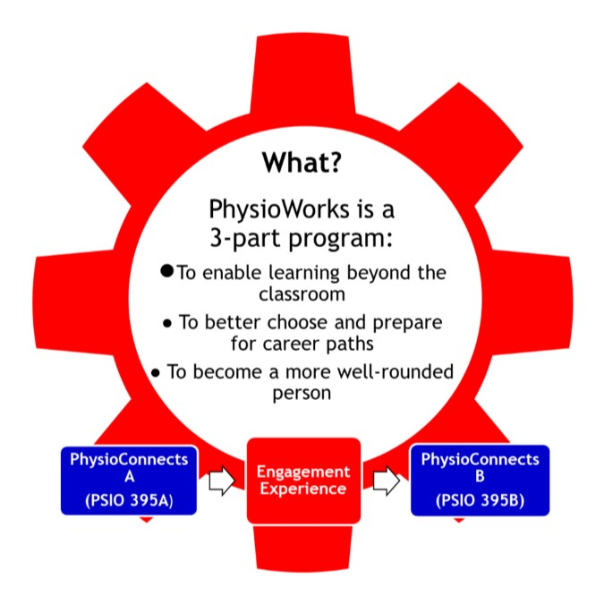 PhysioWorks is a three part program, consisting of the PSIO395A class, followed by an engaging experiences, and concluded with the PSIO395B course.